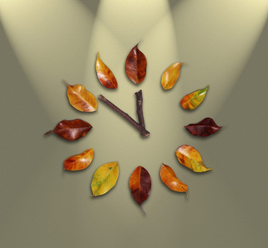 twigs-leafs-clock-time-to-sign-up