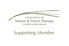 Association of Nature & Forest Therapy Supporting Member Logo